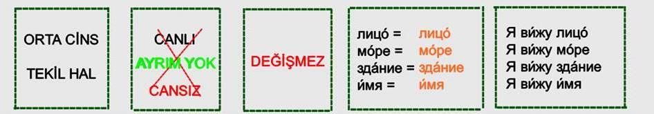 Rusça İsmin İ Hali 10