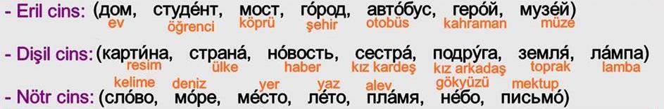 Rusça İsmin Yalın Hali 12