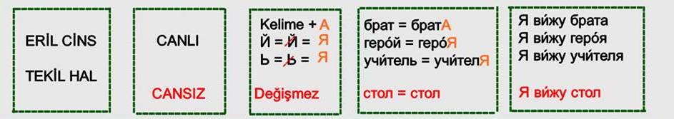 Rusça İsmin İ Hali 8
