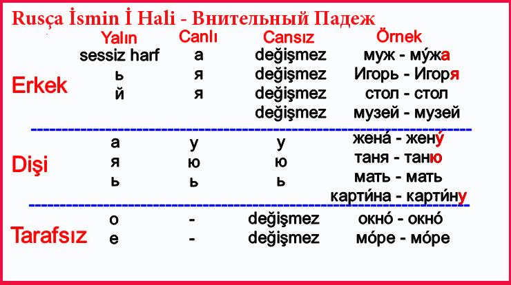 Rusça İsmin İ Hali - Внительный Падеж